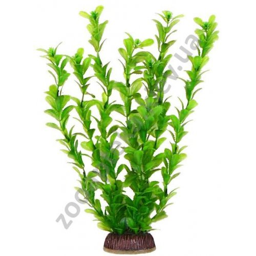 Aquatic Nature - аквариумное растение Акватик Натюр, 29 см х 8 шт/уп