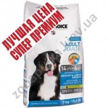 1-st Choice Adult Large & Medium Breeds - корм Фест Чойс для взрослых собак средних и крупных пород