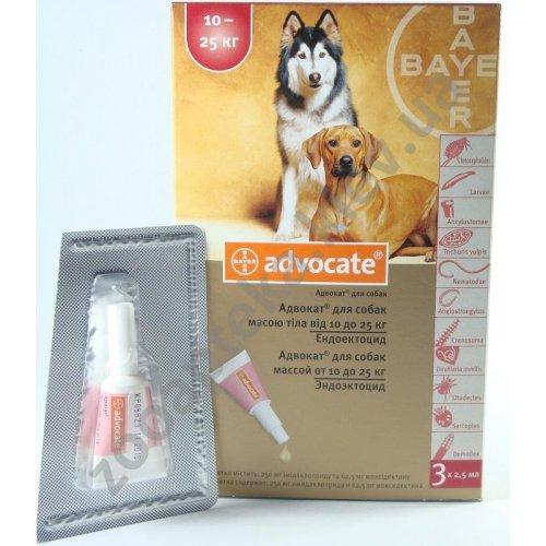 Bayer Advocate - капли Байер Адвокат для собак и щенков