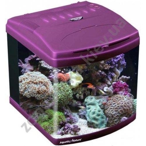 Aquatic Nature Evolution - аквариум Акватик Натюр, пурпурный
