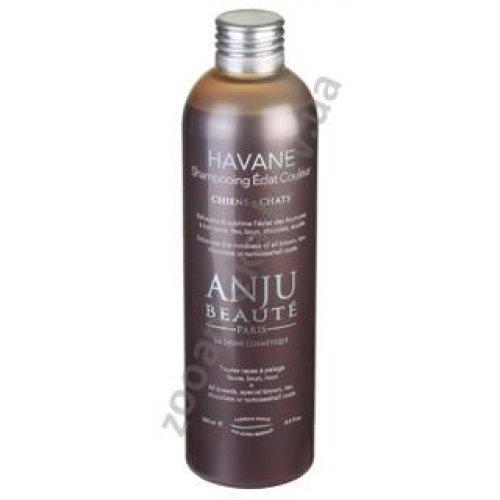 Anju Beaute Havane - шампунь Анжу Бьюте для шерсти коричневого окраса