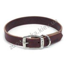 Coastal - Коастал Latigo Leather Town Collar Ошейник кожаный коричневый