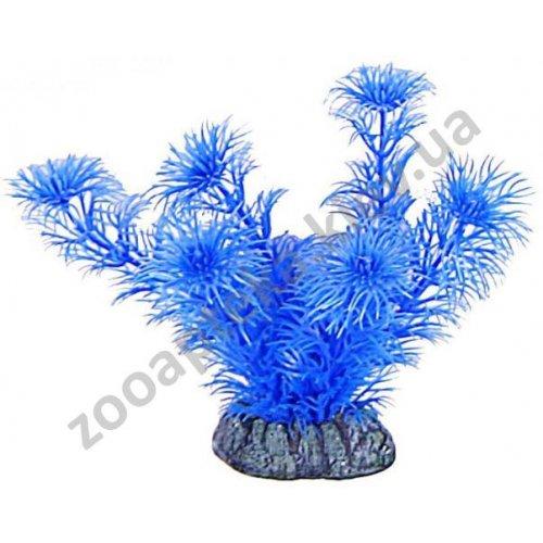 Aquatic Nature - Акватик Натюр аквариумное растение, 13 см х 8 шт/уп