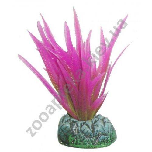 Aquatic Nature - аквариумное растение Акватик Натюр, 8 см х 10 шт/уп