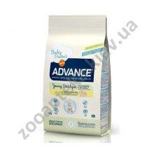 Advance Young Sterilized - корм Эдванс для молодых стерилизованных кошек