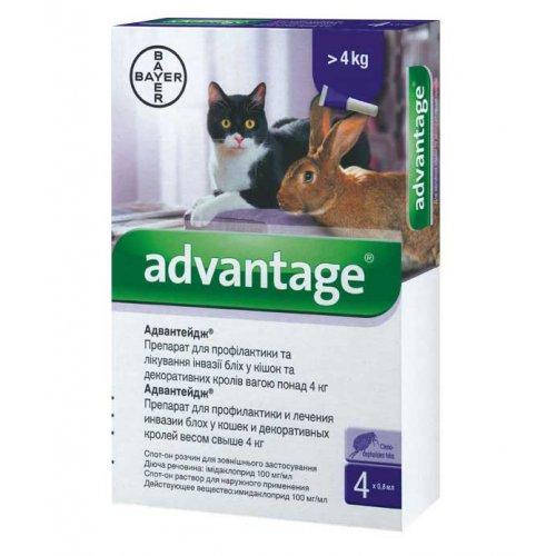 Bayer Advantage Cat 80 - капли Байер Адвантейдж от блох для кошек и декоративных кроликов