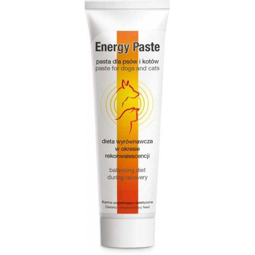 Dolfos Energy Paste - добавка Дольфос Энергетическая паста