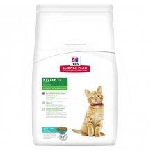 Hills SP Kitten - корм Хилс для котят, беременных и кормящих кошек с тунцом