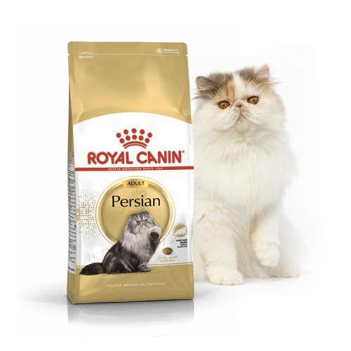 Royal Canin Persian 30 - корм Роял Канин для персидских кошек