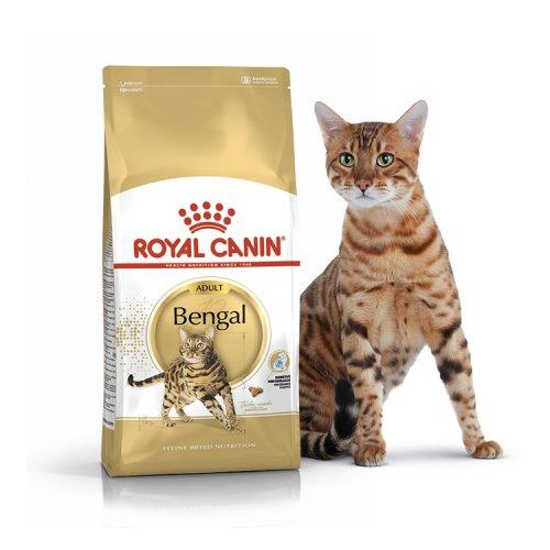 Royal Canin Bengal - корм Роял Канин для бенгальских кошек