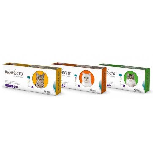 Bravecto Spot-On - инсектоакарицидные капли Бравекто Спот-Он для кошек