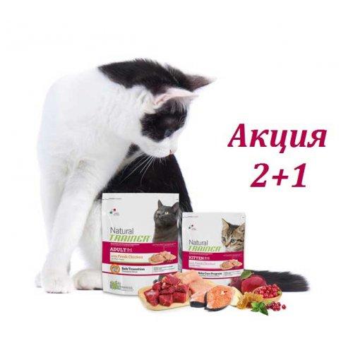 Акция 2 + 1 - корм Трейнер для кошек и котят