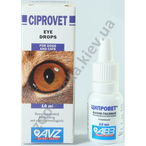 Drugs That Harm the Eyes - Natural Eye Care