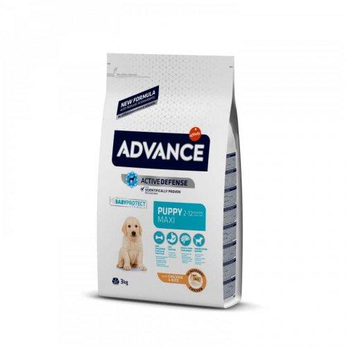 Advance Maxi Puppy - корм Эдванс для щенков крупных пород от 2 до 12 месяцев