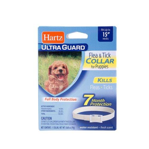 Hartz Ultra Guard - ошейник Хартц от блох и клещей для щенков старше 6-недельного возраста