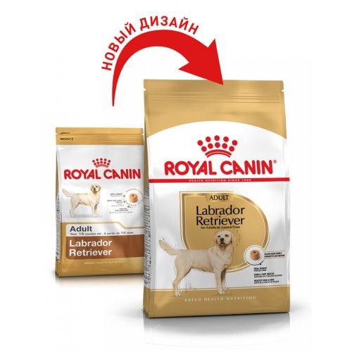 Royal Canin Labrador Retriever Adult - корм Роял Канин для взрослых лабрадоров ретриверов
