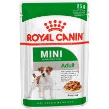 Royal Canin Mini Adult - консервы Роял Канин для собак мелких пород