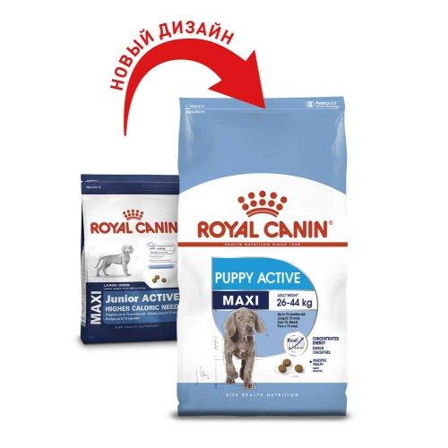 Royal Canin Maxi Junior Active - корм Роял Канин для активных щенков крупных пород