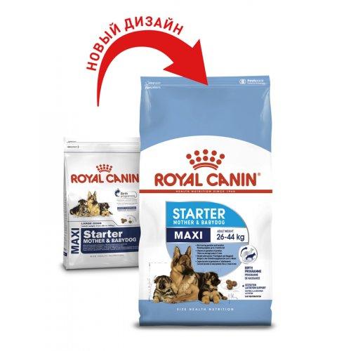 Royal Canin Maxi Starter - корм Роял Канин для щенков крупных пород, до 2 месяцев