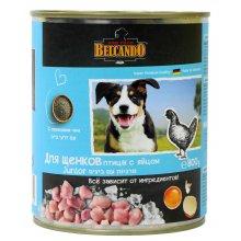Belcando Junior - консервы Белькандо Птица с яйцом для щенков