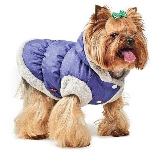 Pet Fashion - куртка-жилет Пет Фешн Бонжур для собак