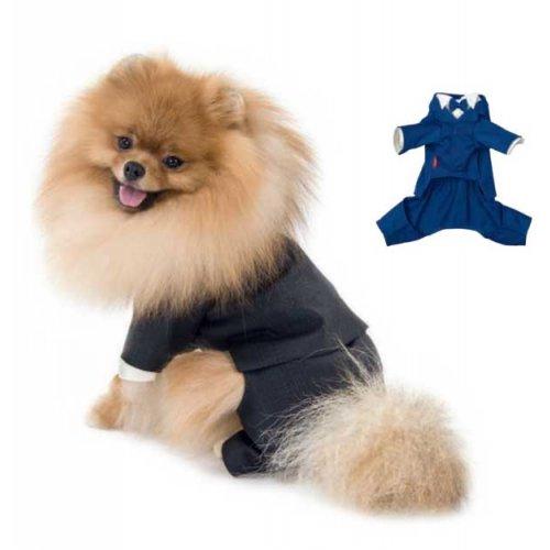 Pet Fashion - костюм-тройка Пет Фешн Джованни для собак