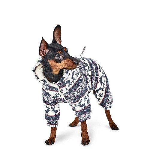 Pet Fashion - комбинезон Пет Фешн Пегас для собак