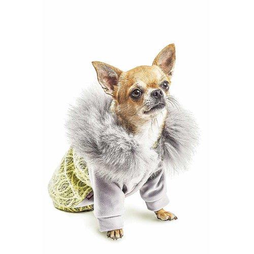 Pet Fashion - кенгурушка Пет Фешн Тиффани для собак