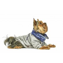 Pet Fashion - толстовка Пет Фешн Фред для собак