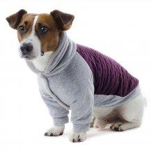 Pet Fashion - толстовка Пет Фешн Генри для собак