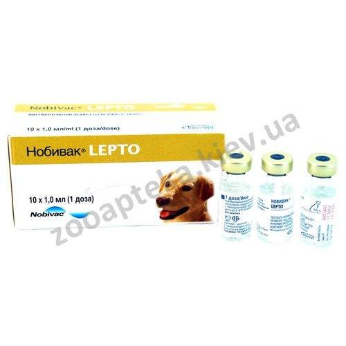 Intervet Nobi-Vac Lepto - вакцина Нобивак Лепто против лептоспироза