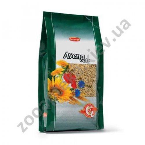 Padovan Avena decorticata - корм Падован овсяный для птиц