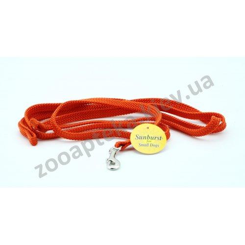 Coastal Sunburst - поводок для собак Коастал, нейлон