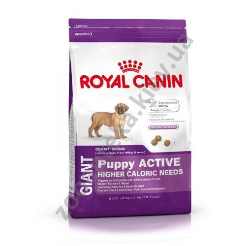 Royal Canin Giant Puppy Active - корм Роял Канин для активных щенков гигантских пород