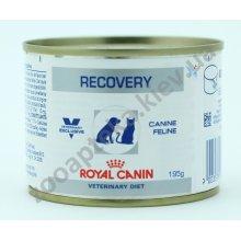 Royal Canin Recovery - диетические консервы Роял Канин для собак и кошек
