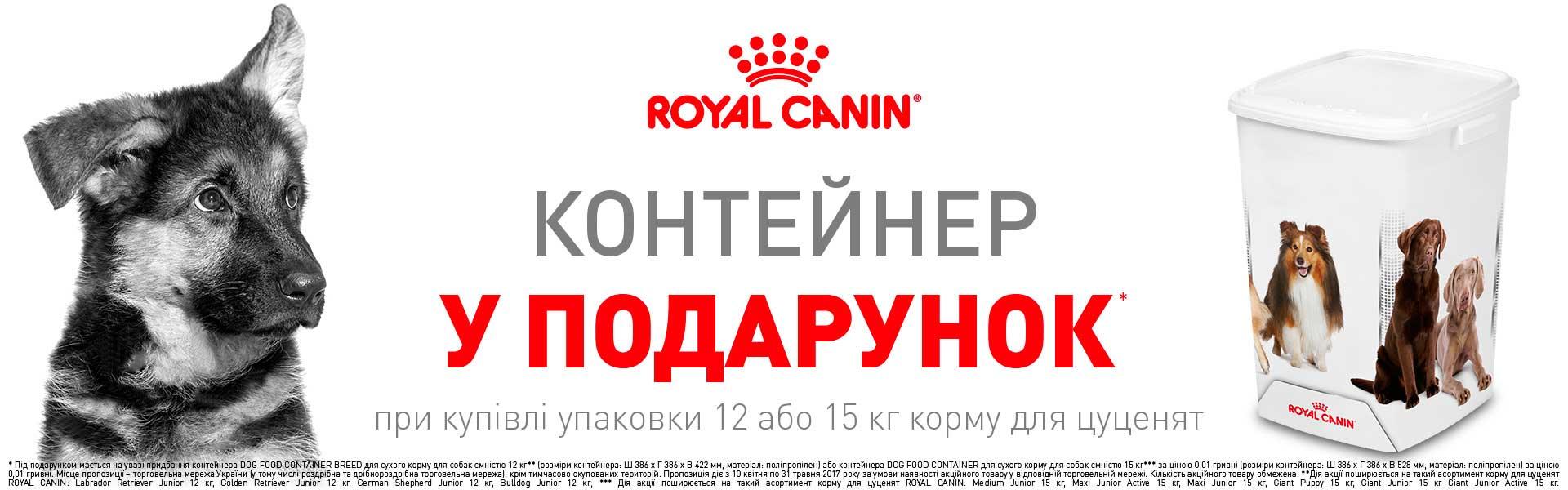 Рояль контейнер для собак