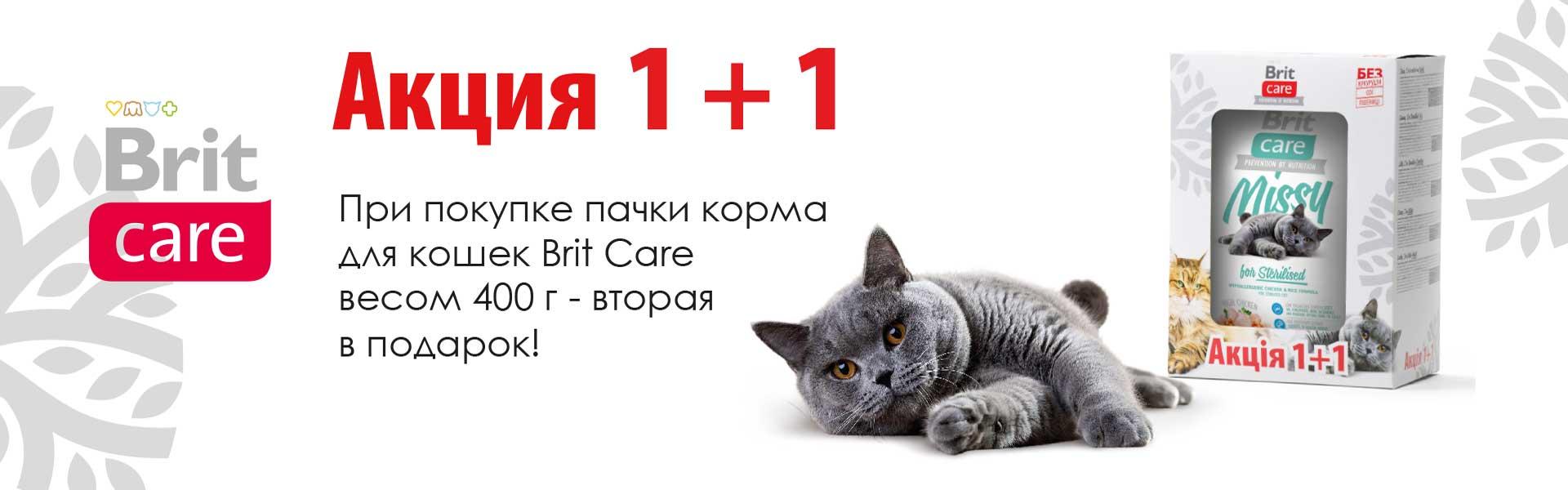 Brit Care акция