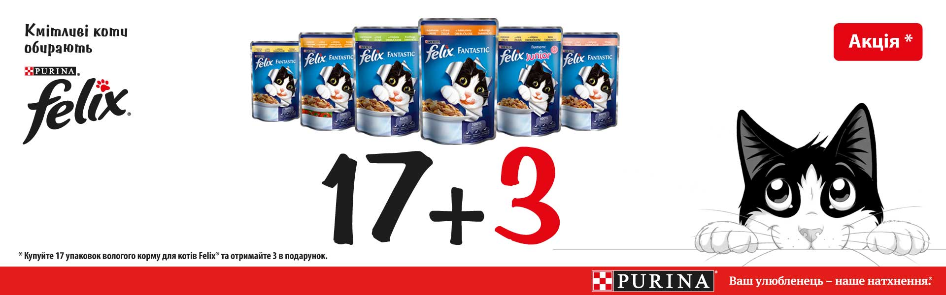 Felix 17 + 3