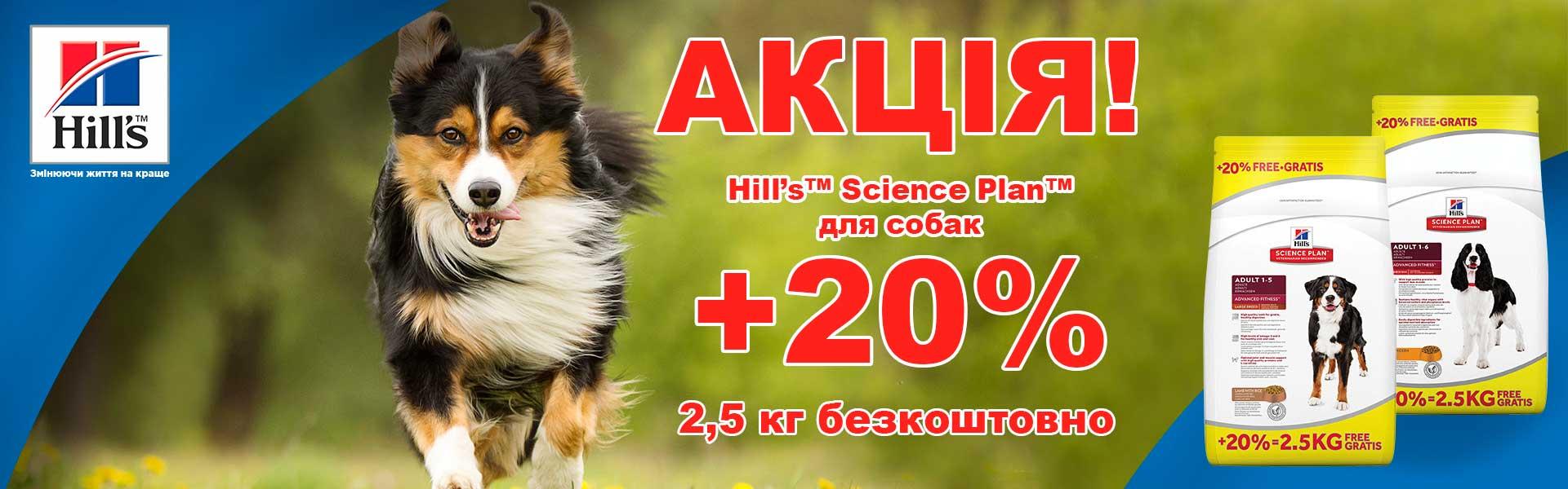 Hills 2,5 кг бесплатно