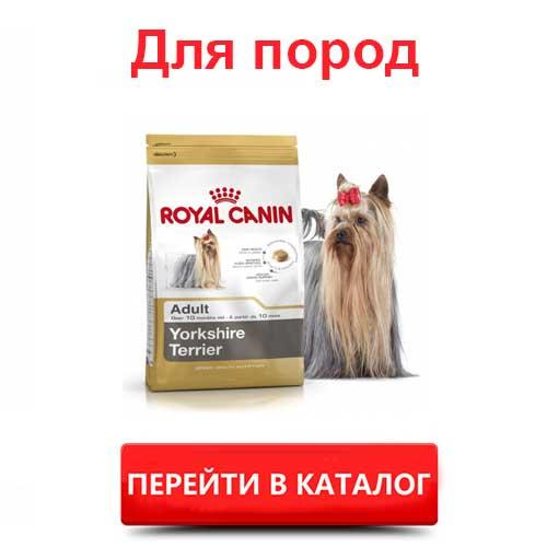 Корм Роял Канин для пород собак