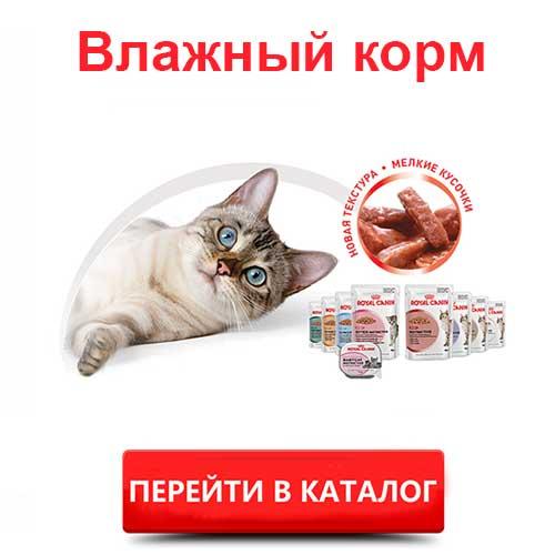 Консервы для кошек Роял Канин