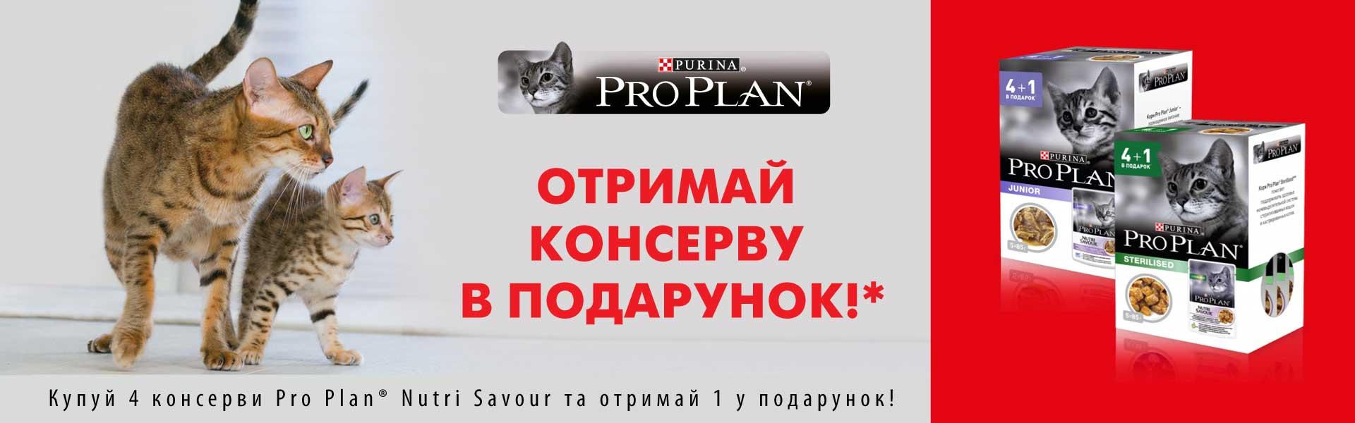Про План паучи акция 4+1
