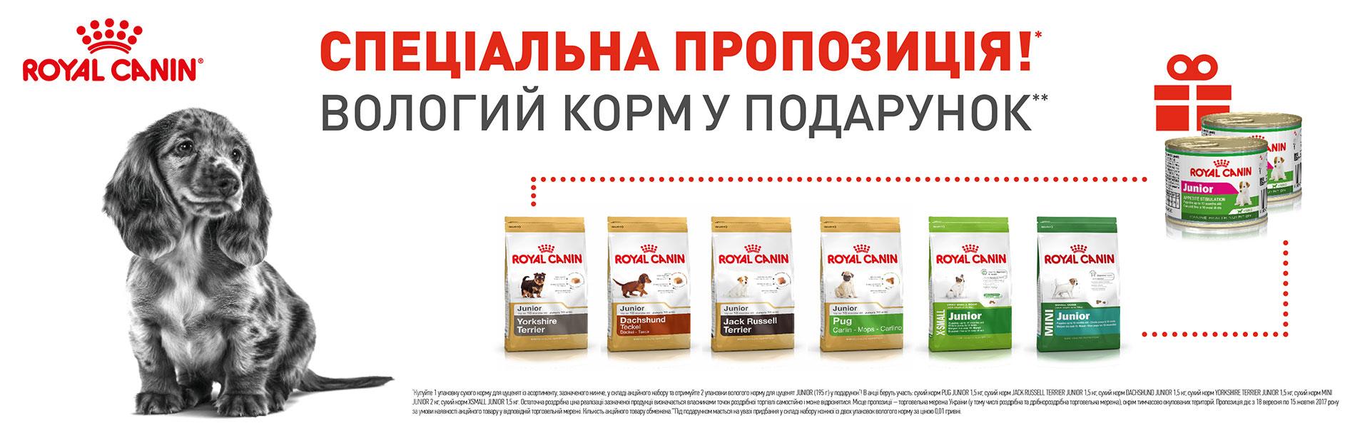 Акция на корма Роял Канин для щенков мелких пород