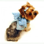 Monkey Daze Angel Wing harness - шлея Манки Дазе Крылья ангела голубая для собак (80401_08)