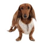 Puppia Spring Gala - Пуппия шлея для собак, цвет бежевый ( AC 851_BEIGE_L;  AC 851_BEIGE_М;  AC 851_BEIGE_S)
