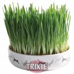 Trixie - тарелка керамическая для травы и семена