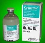 Intervet Cobactan - инъекционная суспензия Интервет Кобактан для собак