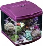 Aquatic Nature Evolution - аквариум Акватик Натюр пурпурный (12784)