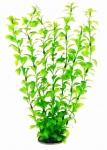 Aquatic Nature - Аквариумное растение Акватик Натюр, 34 см х 6 шт/уп