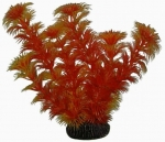 Aquatic Nature - Аквариумное растение Акватик Натюр, 19 см х 8 шт/уп